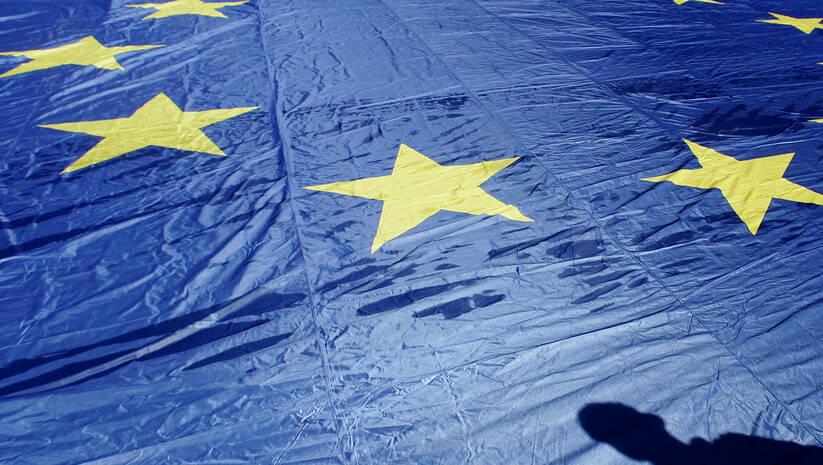 Srđan Ilić: Evropska unija - zastava