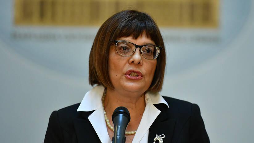 Srđan Ilić: Maja Gojković