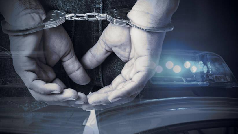 Hapšenje, policija / Foto: Insajder
