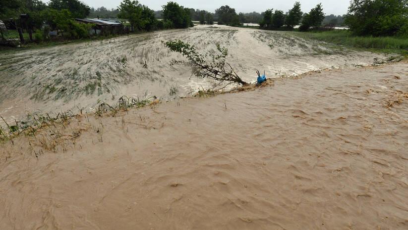 Poplava, ilustracija, Foto: Srđan Ilić